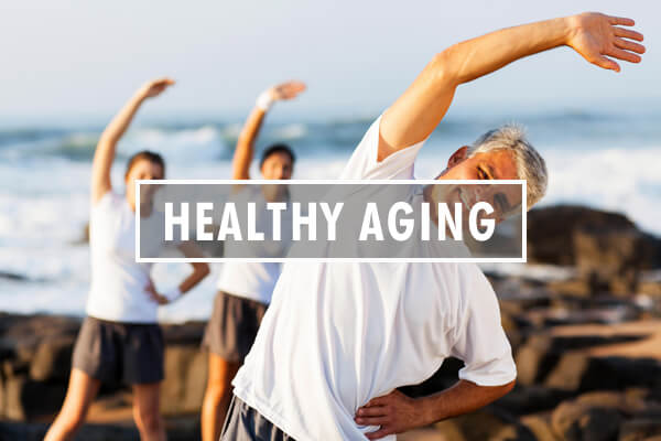 MSM for Healthy Aging