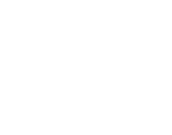 MSM Made in the USA